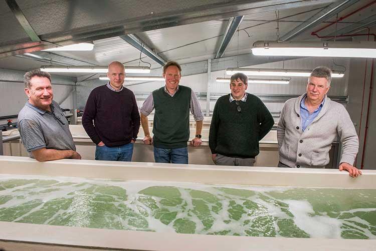 Great British Prawns management team